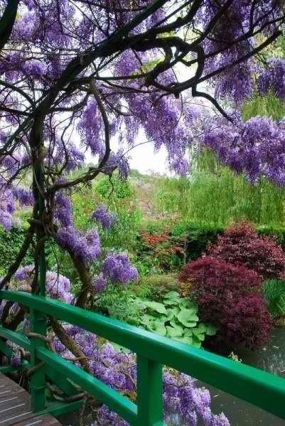 Giverney Gardens.jpg