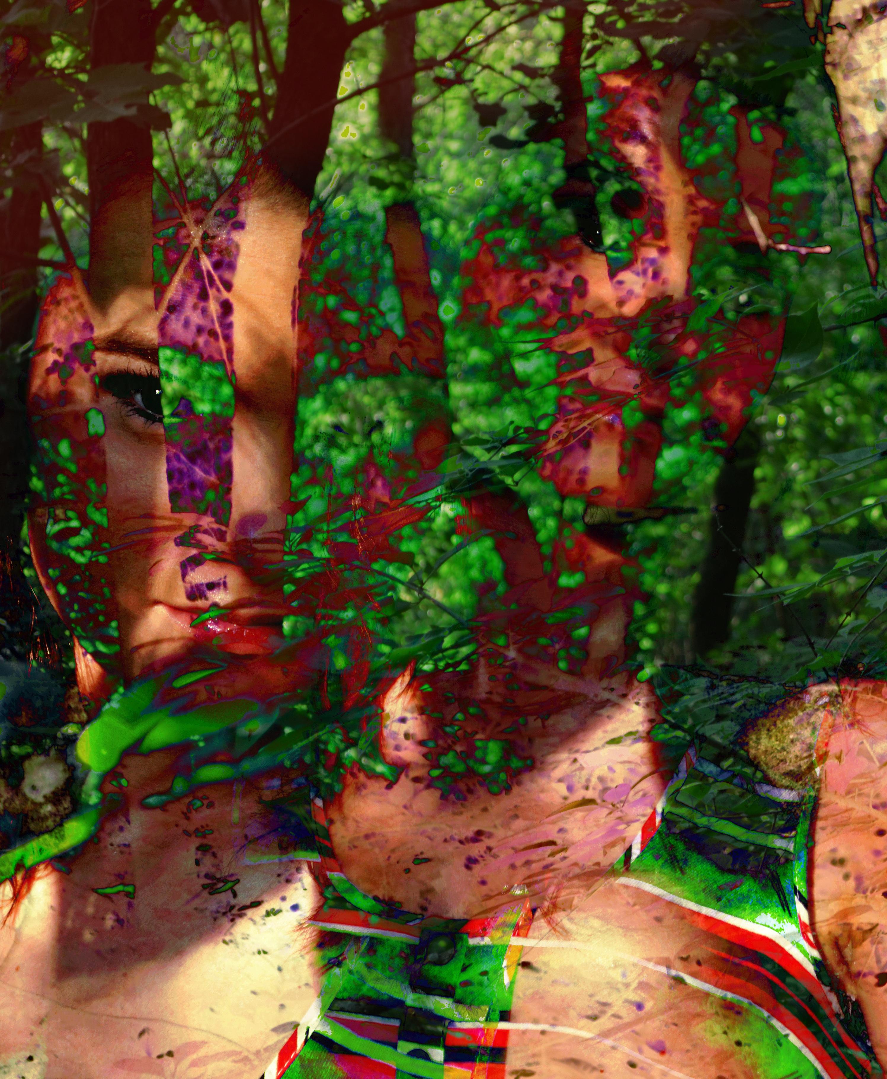 Splitting Trees