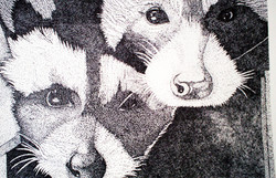 Drawing 1 Pointillism Racoons.jpg