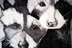Pointillism Raccoons.jpg