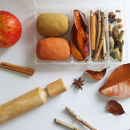 Playdough Mini Kit - Autumn Nature