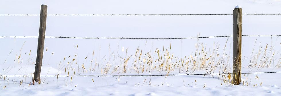 3 wire.jpg
