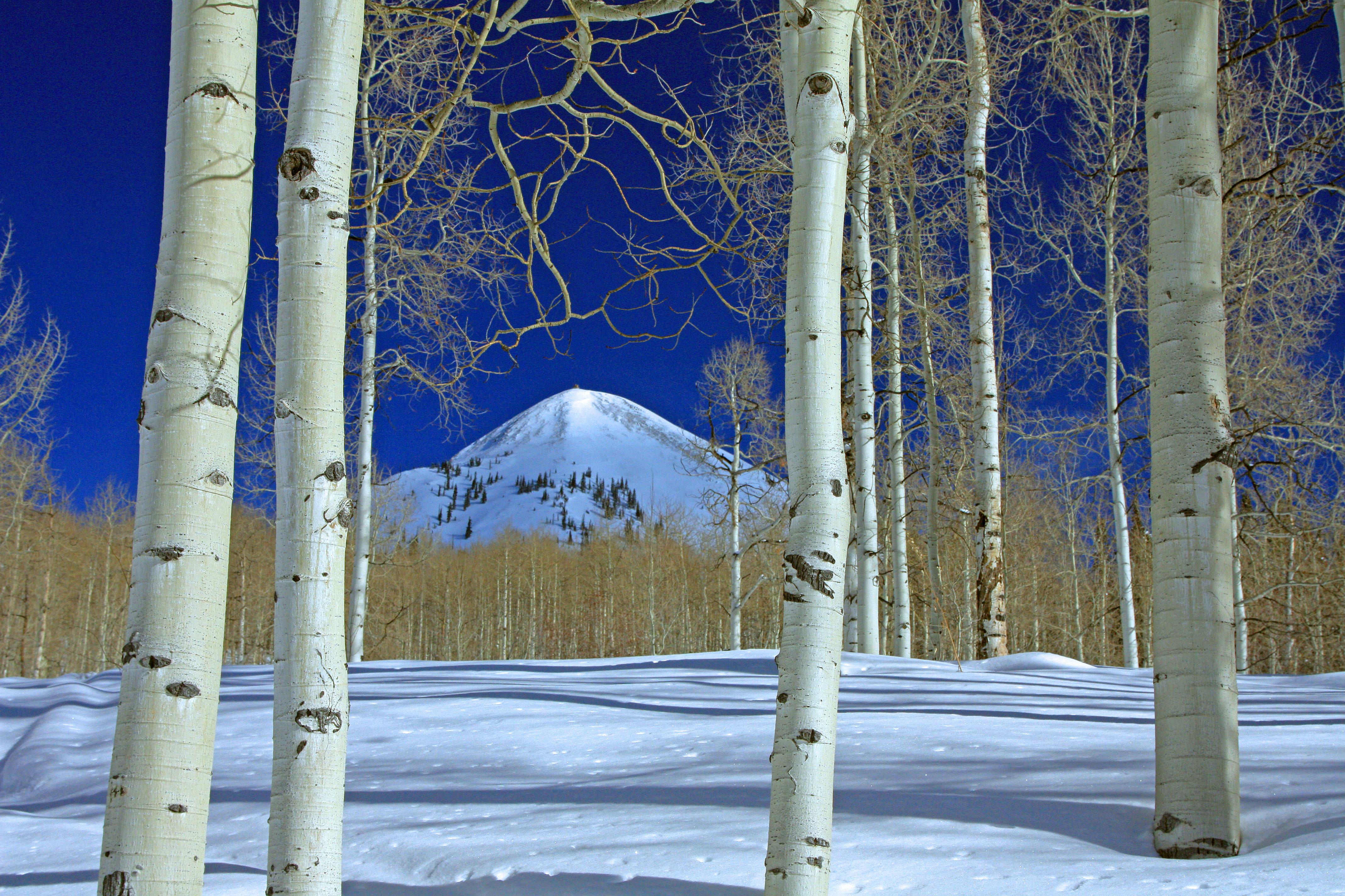 Hahn's Peak ( a different view)