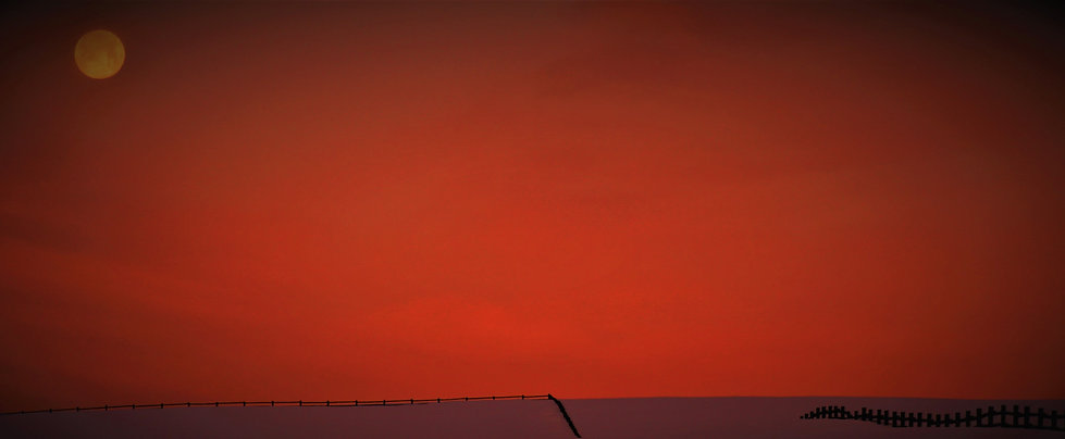 Worm Moon at Sunrise