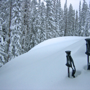 Another Powder Day in Steamboat