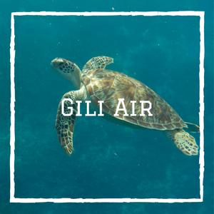 Gili Air Bali Indonésie voyage en famille tortue