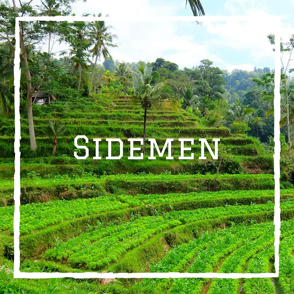 Sidemen Bali Indonésie voyage en famille