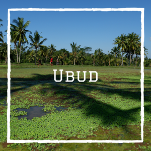 Ubud Bali Indonésie voyage en famille