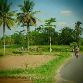Ubud et ses environs