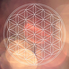 flower of life on colored blured backgro