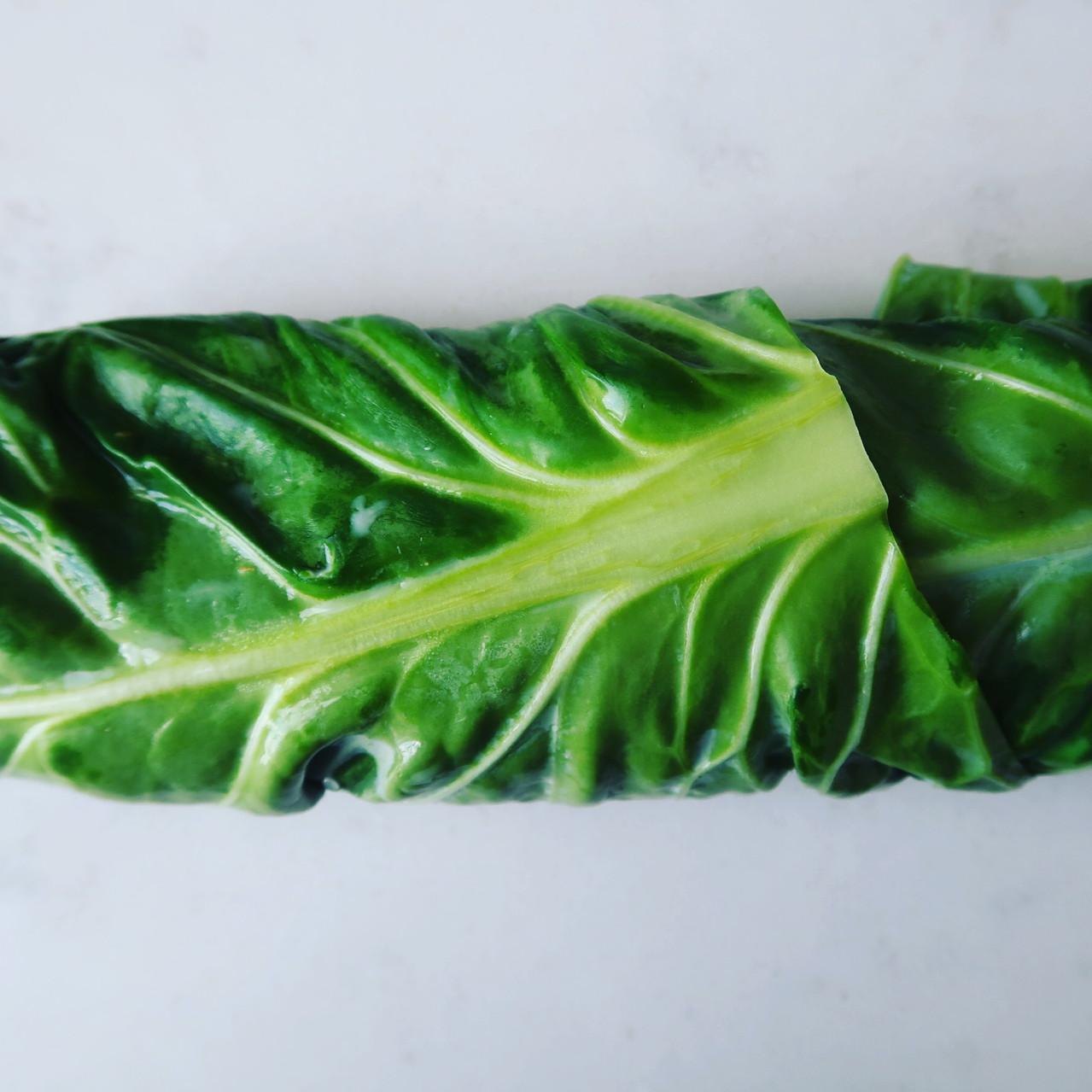 Spring green wrap