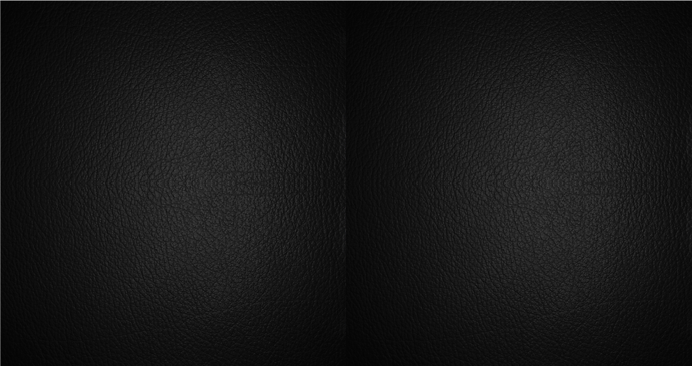 2Leather Black2_edited.png