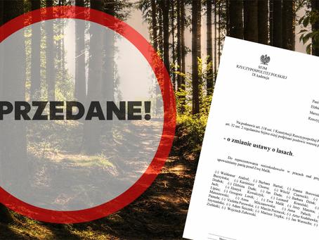 Posłowie PiS chcą wymieniać państwowe lasy za bezcen?! Wprowadzono nowy projekt ustawy!