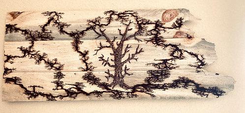 The Radiant Tree
