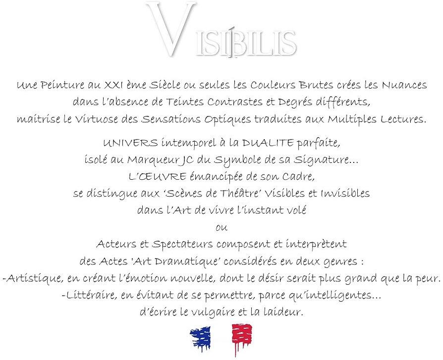 VISIBILIS PAGE ACCUEIL.jpg