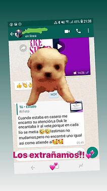 WhatsApp Image 2020-11-19 at 21.47.30.jp