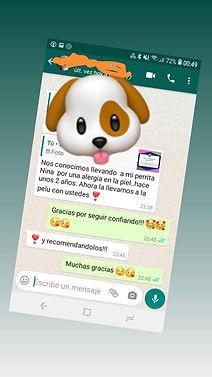 WhatsApp Image 2020-11-19 at 21.45.53.jp