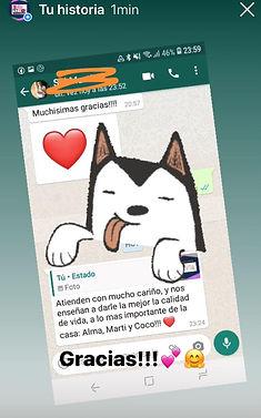 WhatsApp Image 2020-11-19 at 21.47.37.jp