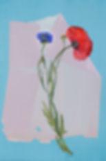 herbier banal03.jpg