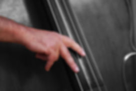 Jazz 8 LR.jpg