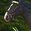Thumbnail: Set REFLEX pour bridon
