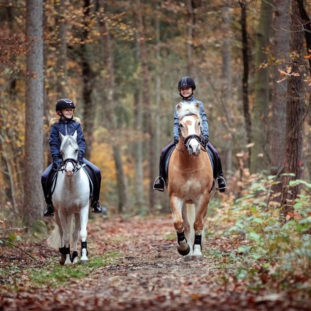 BR Passion Equitation