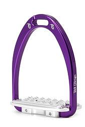SIENA purple.jpg