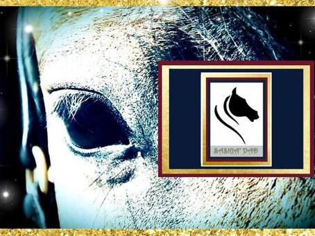 Saskia' Pad dédiée au Cavalier et son Cheval ...