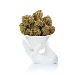 Weed on white