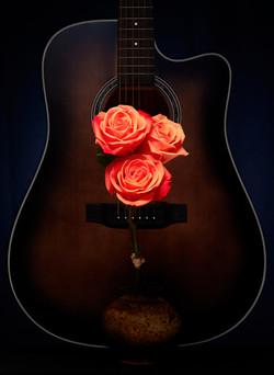 Guitar & Roses.