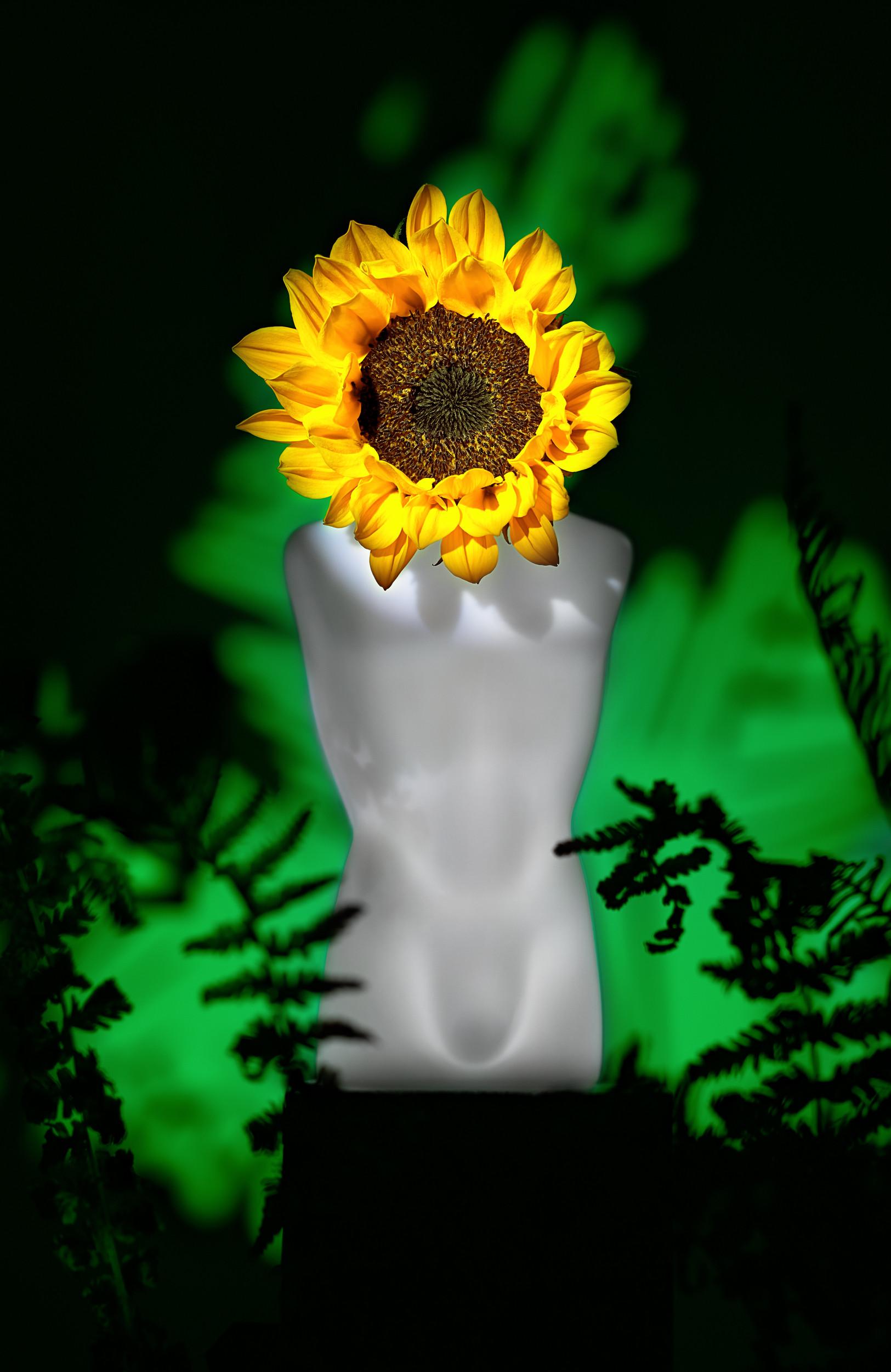 Jean Paul Gaultier parfum.