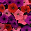 Thumbnail: Petunia Easy Wave