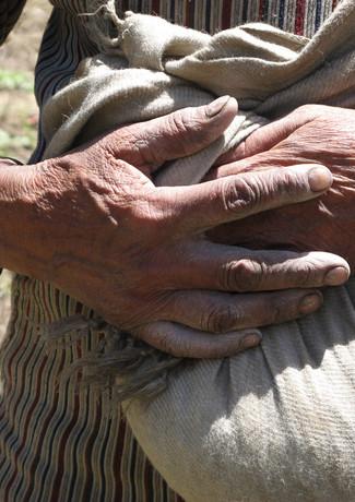 בשק נמצאים הזרעים אותם היא          מפזרת ברוח בלכתה אחרי      השוורים החורשים את האדמה   על גבול נפאל