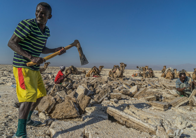 אין סוף לעבודה הקשה במדבר דנקיל הלוהט באתיופיה