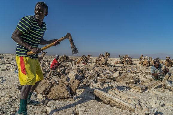 אין סוף לעבודה הקשה במדבר דנקיל