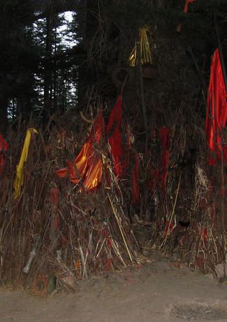 גרוש שדים ומזיקים בכפר אי שם בהודו