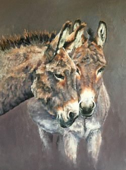 'Donkeys'