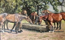 'The Water Trough (WW1)'