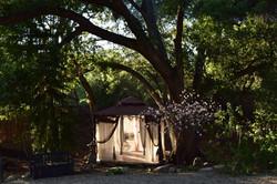 "The ""Clarity Cottage""  Ojai CA"