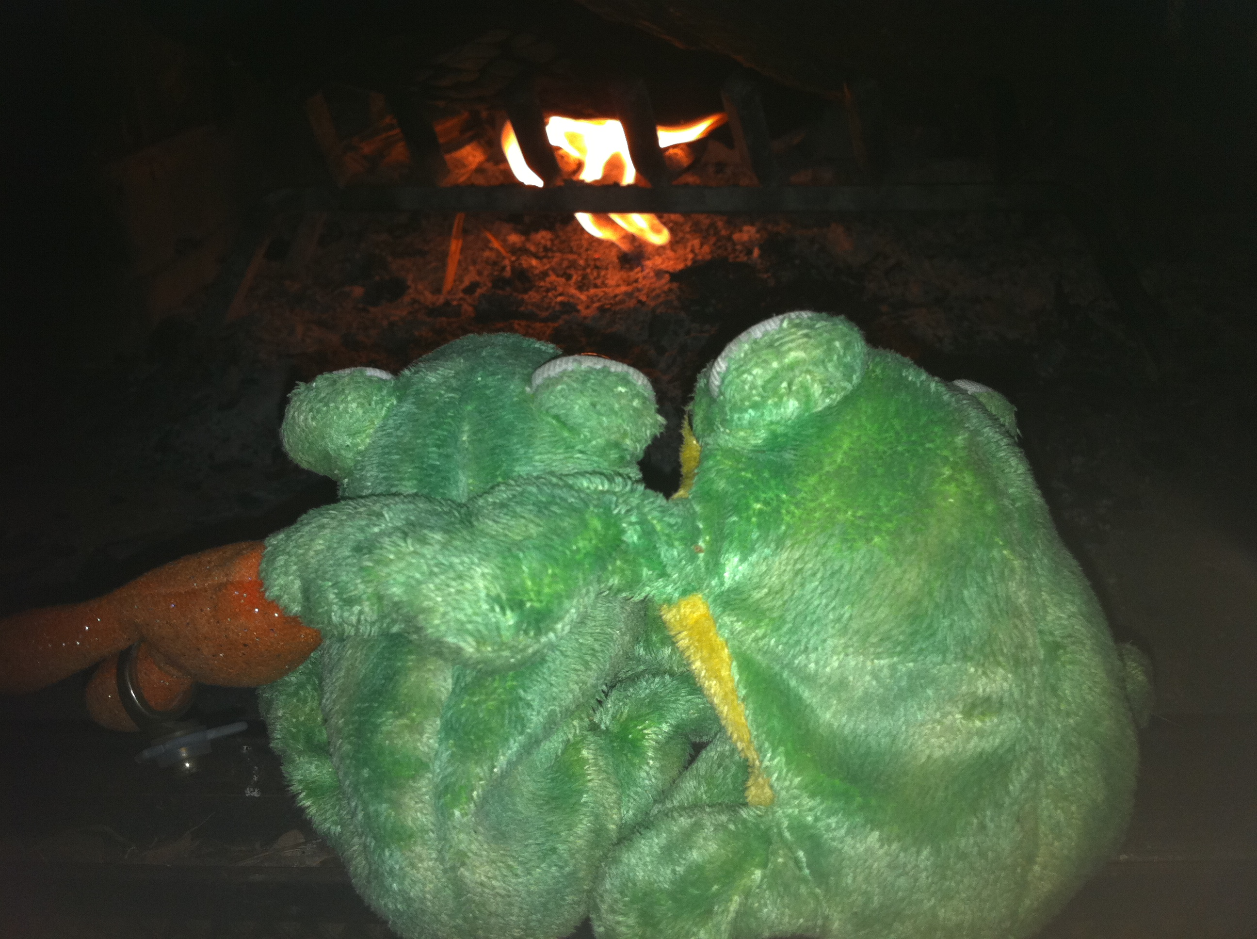 The Frogmires at couples retreat
