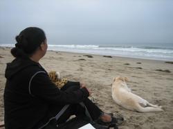 SoulArts At Bates Beach Ojai CA