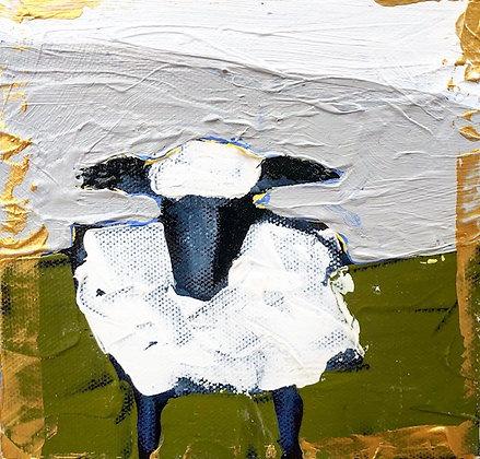 Little Lamb 6