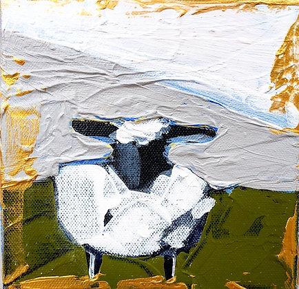 Little Lamb 5