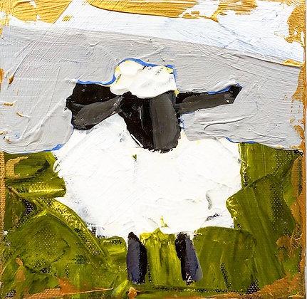 Little Lamb 16