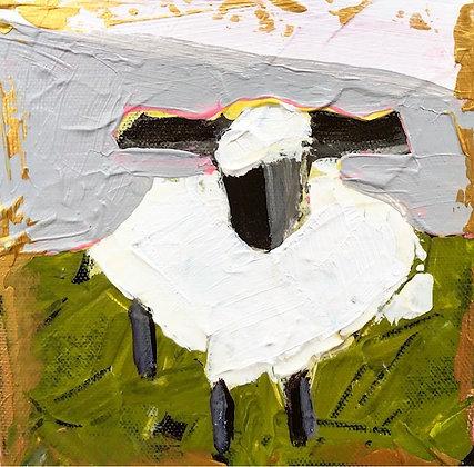 Little Lamb 8