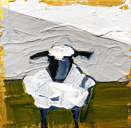 Little Lamb 13