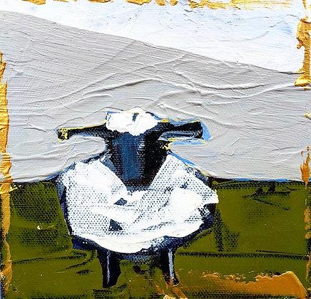 Little Lamb 7