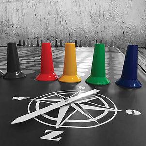 boost-teamtrainingen-kleurrunkompas.jpg