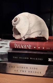 spine poetry.jpg