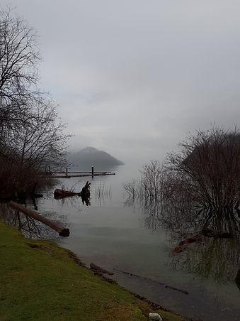 cowi mist.jpg